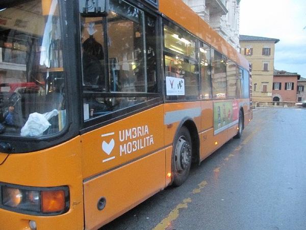 autobus-um