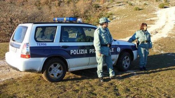 1583593-polizia_provinciale_terni