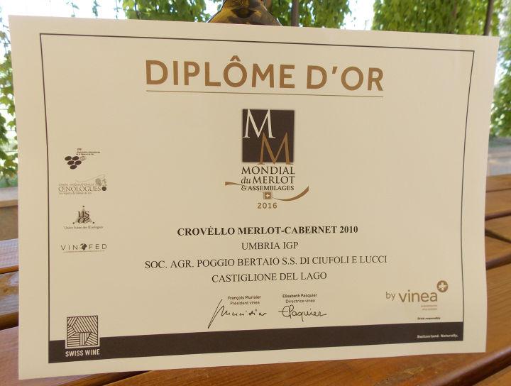 Poggio Bertaio diploma