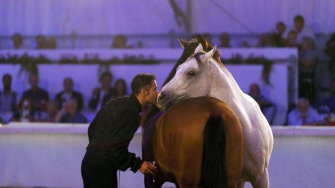Mostra-del-Cavallo-2015-4-678x381