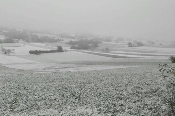 neve-collecroce