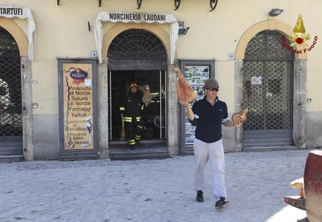 Firefighters carry cured hams out of a grocery store selling typical regional products of Norcia, central Italy, Tuesday, Nov. 1, 2016. Earthquake aftershocks gave central Italy no respite on Tuesday, haunting a region where thousands of people were left homeless and frightened by a massive weekend tremor that razed centuries-old towns. (Vigil del Fuoco Italian firefighters via AP)