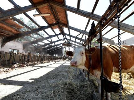 agricoltori terremoto