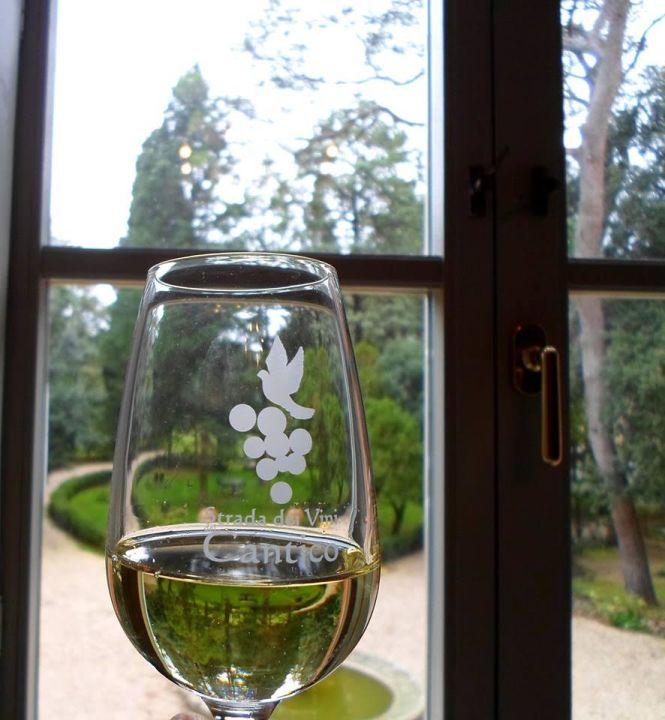 vino-cantico