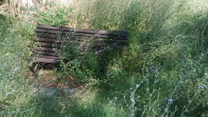 parco-lungonera1
