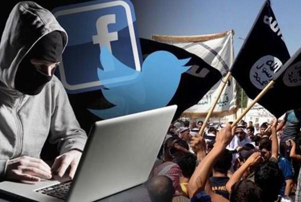 terrorismo web