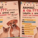 """Perugia, """"Animale…a chi?"""". Presentata l'iniziativa a Palazzo dei Priori"""