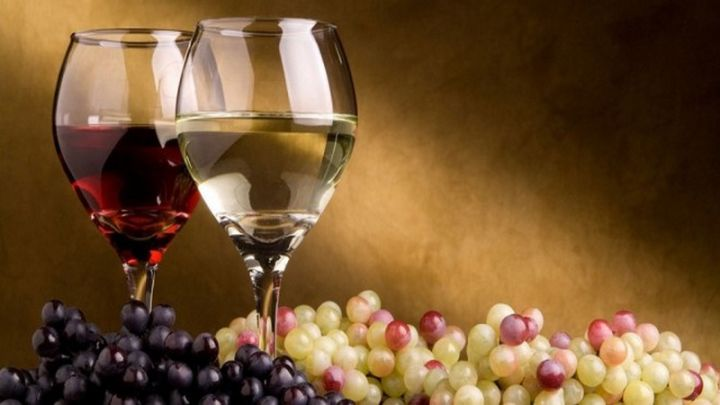 only-wine-festival-perugia