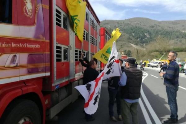 Terremoto: da pastori sardi 1.000 pecore a colleghi Cascia