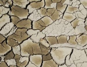 siccità