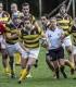 Rugby, riparte oggi la stagione della Barton Cus Perugia