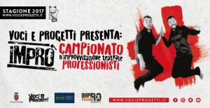 banner_rassegna_professionisti_2017