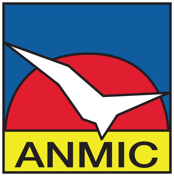 anmic