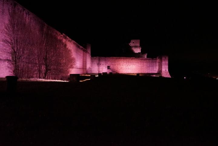 assisi rocca maggiore rosa 1