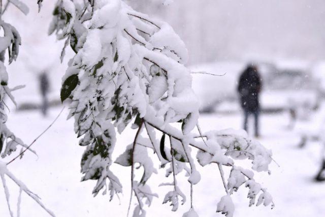 Foto Alfredo Falcone - LaPresse 26/02/2018 Roma ( Italia) Cronaca Neve a Roma Nella foto:un momento della nevicata