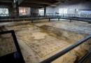 La Villa dei Mosaici di Spello è già un successo:  quasi 8000 visitatori in un mese di apertura