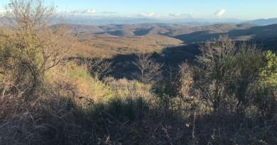 Monte Peglia2