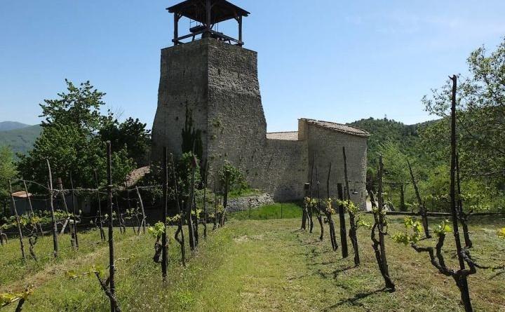 Castello di San Mamiliano (2)