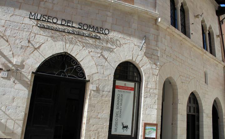 Museo del Somaro (1)