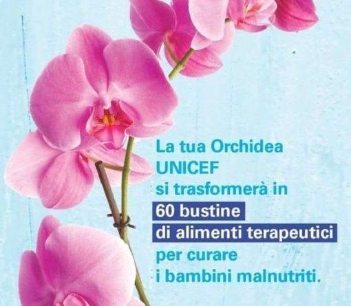 Pietralunga, torna l'orchidea dell'Unicef dedicata alla Festa dei Nonni