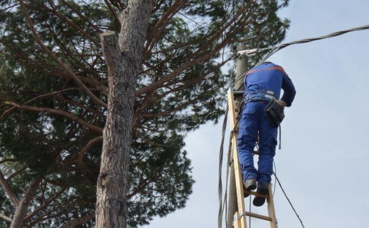 Amelia: Maltempo, intervento per caduta albero su linea elettrica